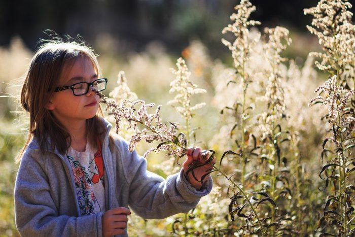 Little girl smelling plant